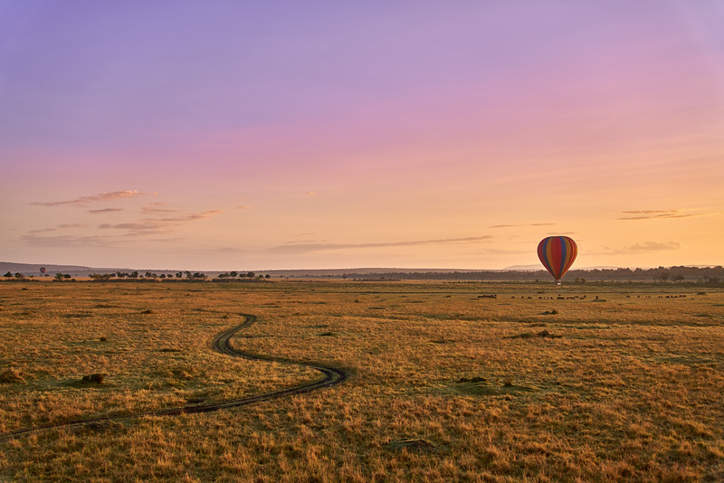 Maasai Mara_DSC08602.jpg