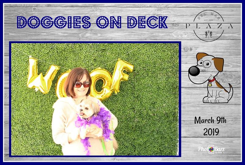 Doggys on Deck49.jpg