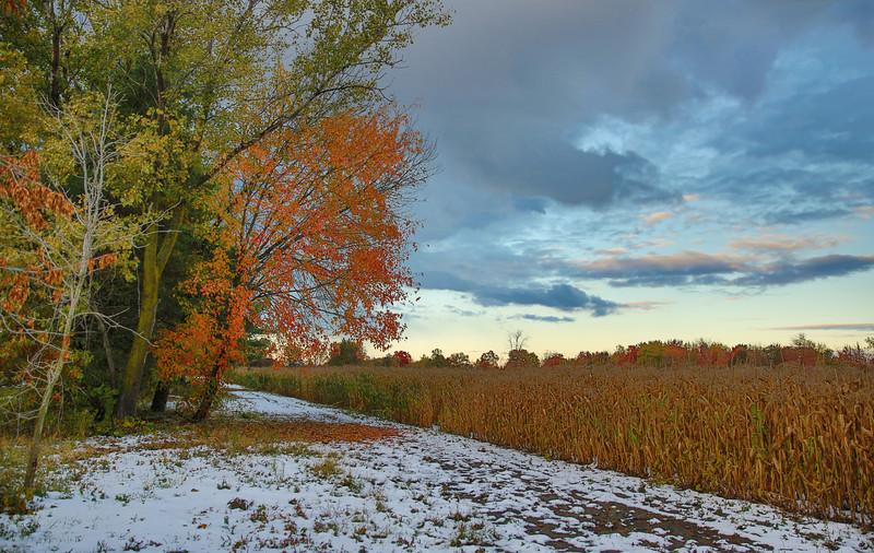 fall 2013-3.jpg