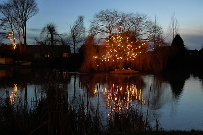 Pond lights 23Dec '12