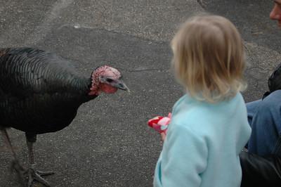 Hogle Zoo - December 2005