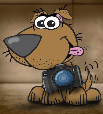 dog-camera-blog.jpg