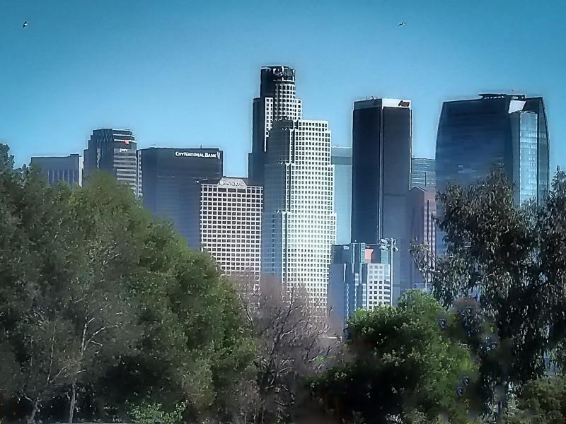 November 2 - Downtown Los Angeles.jpg