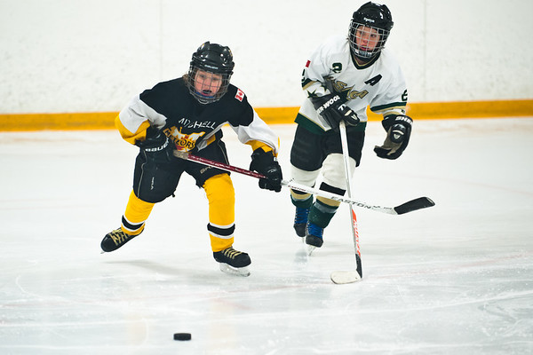 OMHA Wasaga  Series Game 2