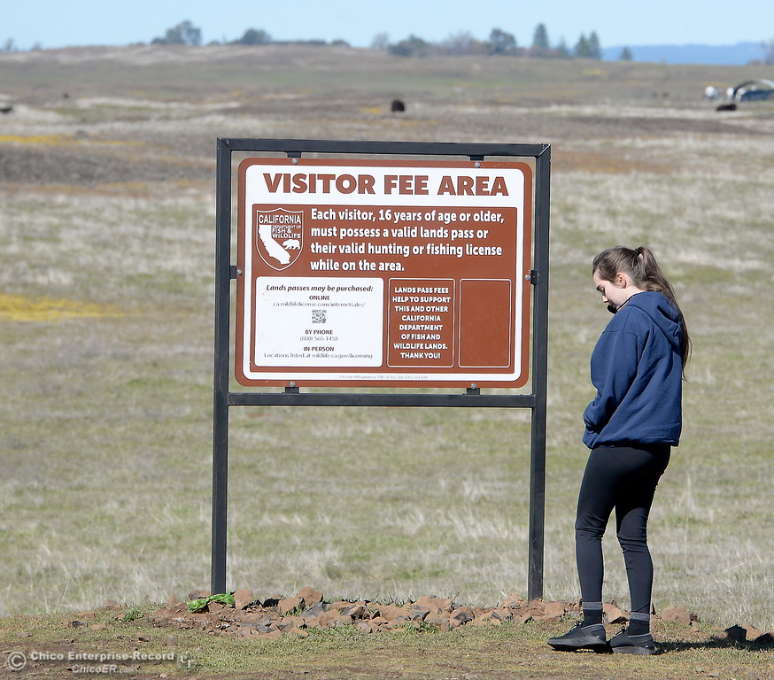 . Holly Shafer of Davis calls the phone number on the sign as she gets ready to enjoy a stroll through the wildflowers  just beginning to bloom on Table Mountain Monday March 5, 2018. Hikers 16-years or older are now required to have a Lands Pass or valid hunting or fishing license. (Bill Husa -- Enterprise-Record)