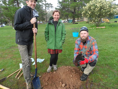Revegetation - Pines Campground and Beyond