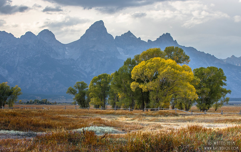 Coming Fall  Photography by Wayne Heim