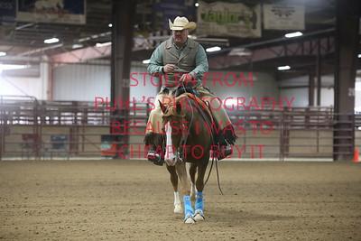 66. AA Ranch Reining