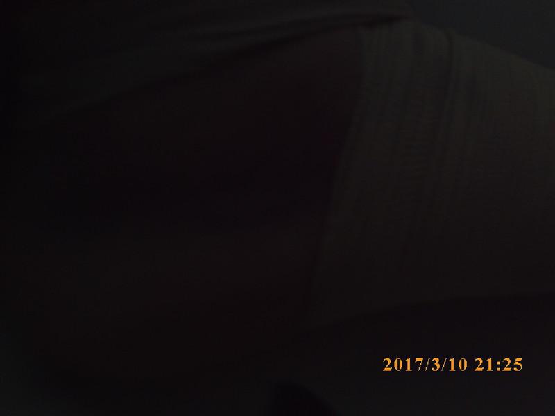 SUNP0587.JPG