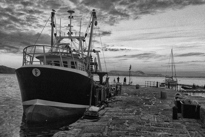 2013 05 10 - Lyme Regis (2).jpg