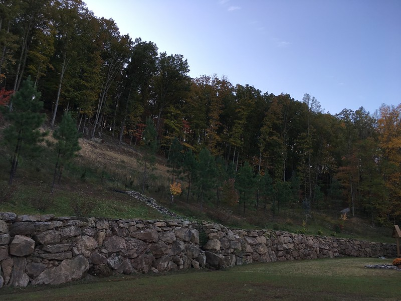 Hermitage Fall 2015