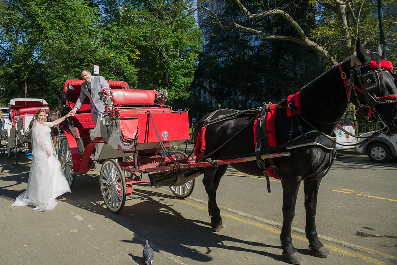Central Park Wedding - Jessica & Reiniel-351.jpg