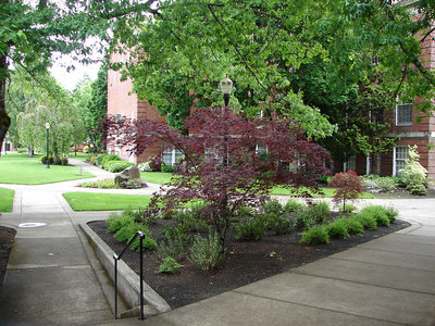 Linfield College, McMinnville