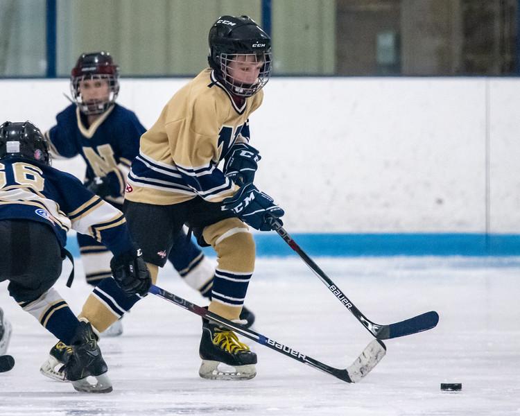 2019-Squirt Hockey-Tournament-236.jpg