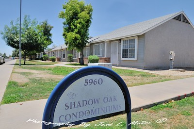 2019-06-24  Shadow Oaks