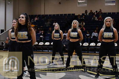 2019-01-22 POM Pom Squad Performance at Basketball Game