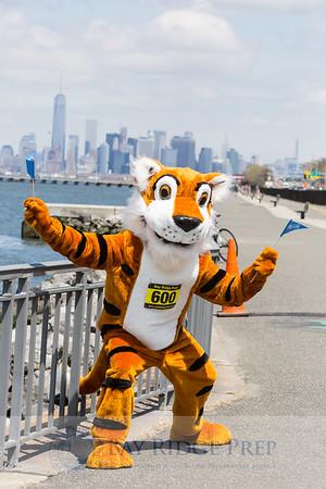 Tiger Trot 2015