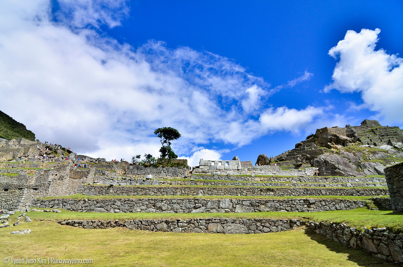 06.20_Machu Picchu-6432.jpg