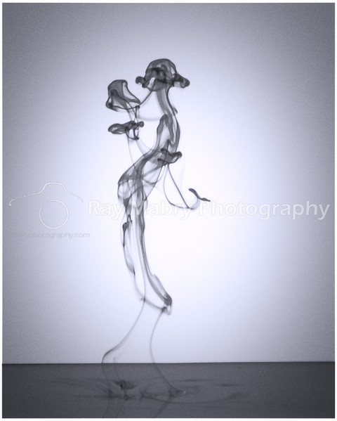 Ink in Motion 088