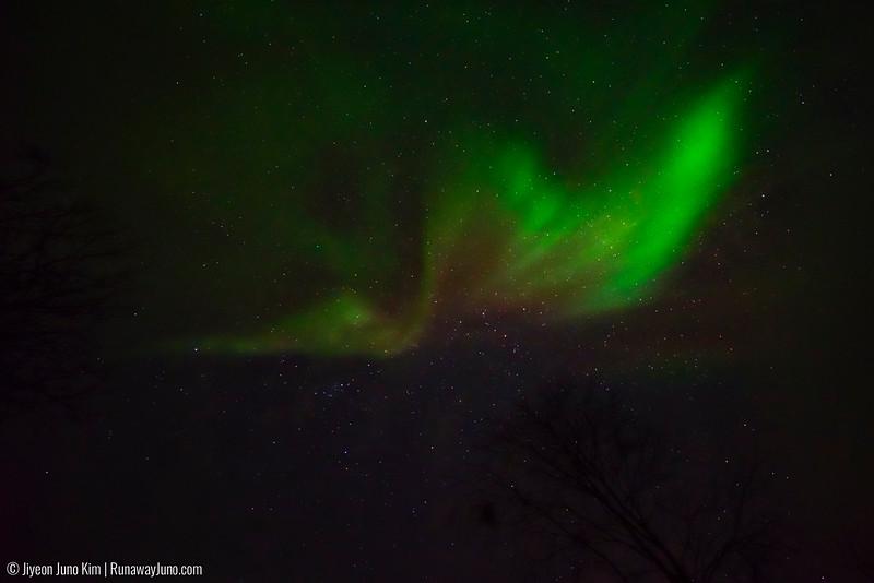 Nov.12_Northern Lights-6106848.jpg