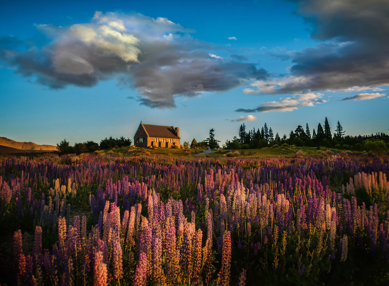 The Lupins at Lake Tekapo I stopped at Lake Tekapo on the way to Christchurch for the great event there. Jason Law had told me all about the lupins here, so I was keen to see for myself! It was good to meet Jason and his crew there for a bit of shooting at sunset!I enjoyed this spot so much that I came back on my drive home from Christchurch. And, if I were to speculate, I think I'll visit this place about 1,000 more times!- Trey RatcliffClick here to read the rest of this post at the Stuck in Customs blog.