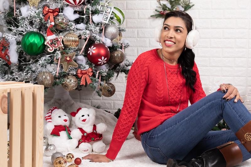 12.10.19 - Leide e Mel's (Mel Pet) Studio Christmas 2019 - -18.jpg