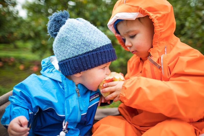 CIK-181007-apples and pumpkins-API_5678.jpg