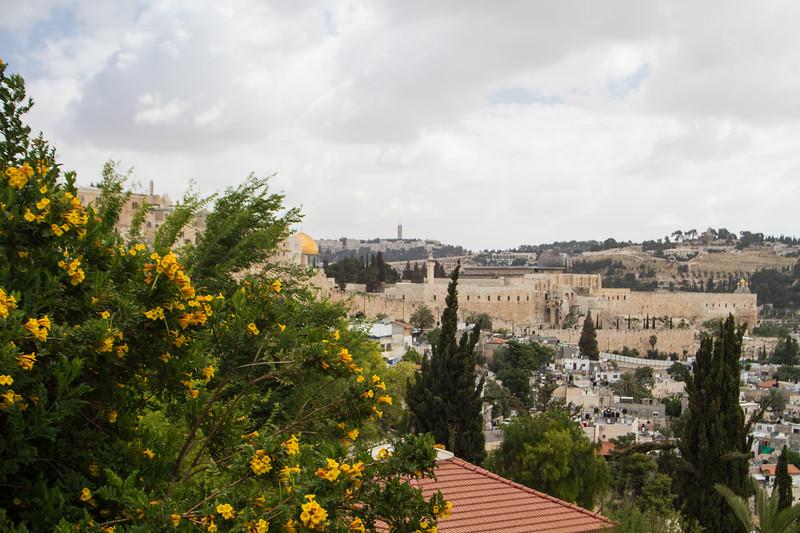 Israel_060614_250