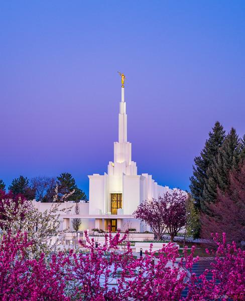 Denver LDS Temple - Sunrise Twilight