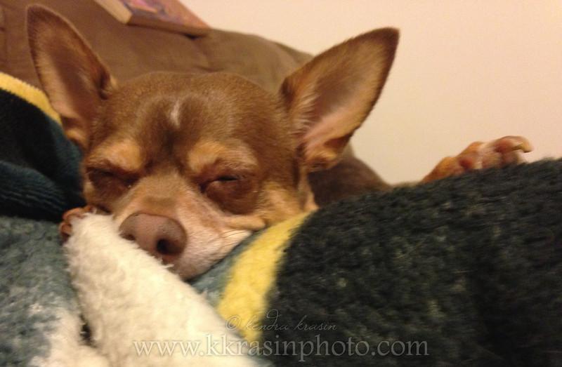 Oliver sleep