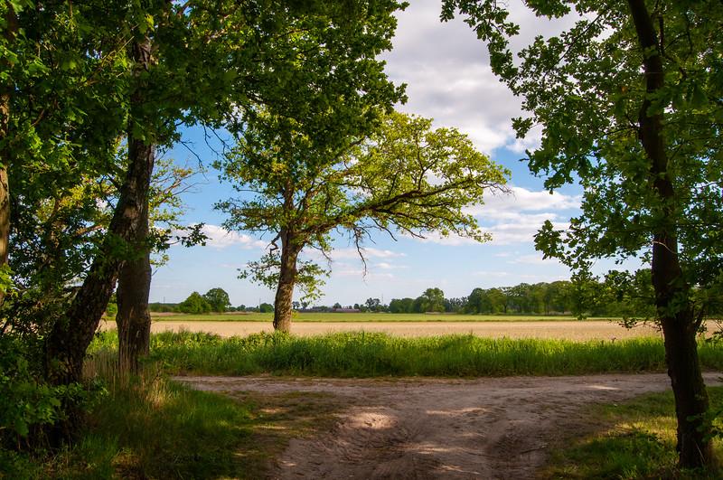GrensPark Kempen~Broek, omgeving Stramprooierbroek & St.-Maartensheide 82.jpg