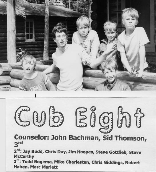 1971 Cub 8