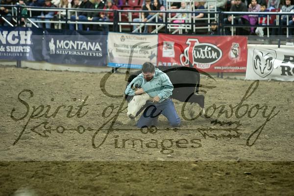 Steer Wrestling and Tie-down Roping