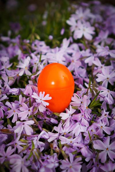 Harmony Easter Egg Hunt 4-1-12 (2 of 47).jpg