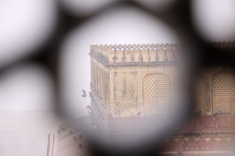 peeking through a grate in the Amber Fort