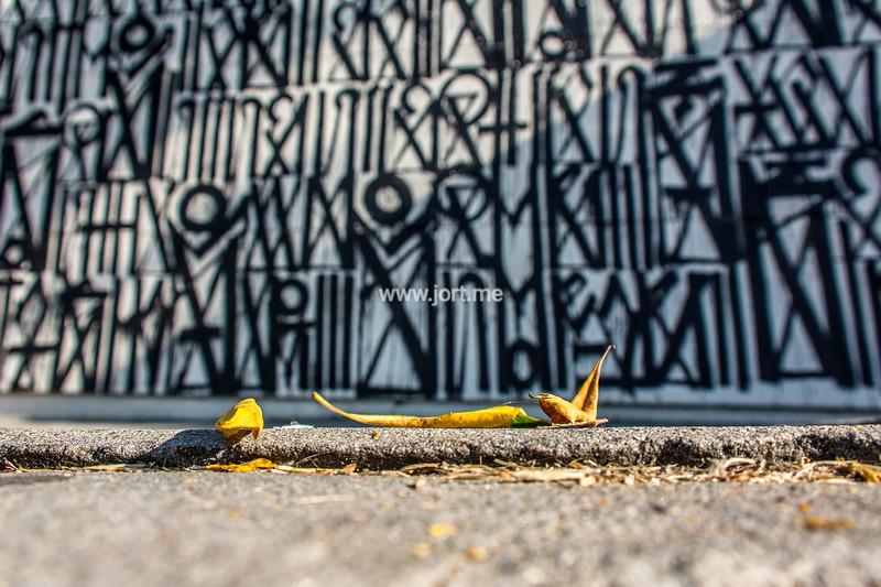 Leaves at Retna wall