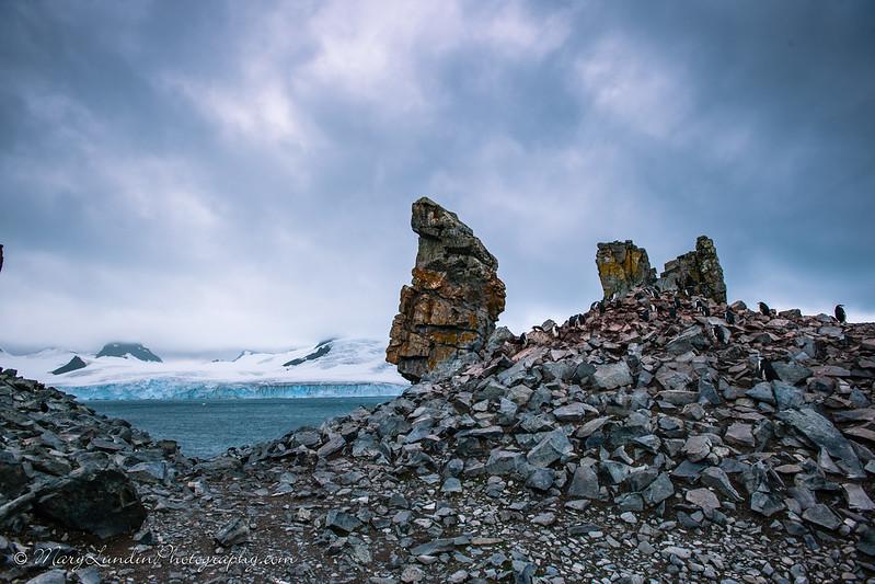 Antarctic-61