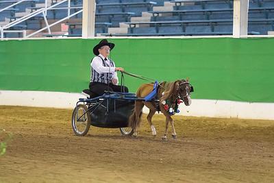 166 - Reg. Miniature Horse Driving Stake