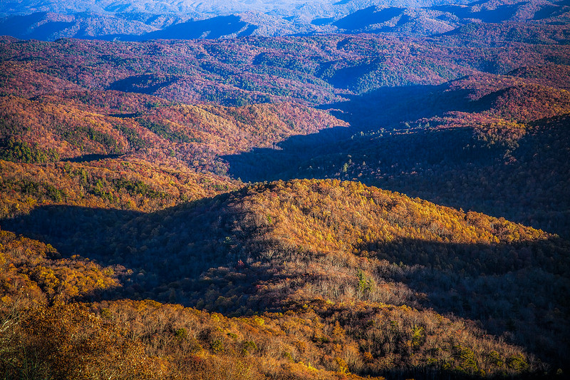 Blue Ridge Autumn Textures
