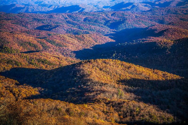 Blue Ridge Autumn Textures