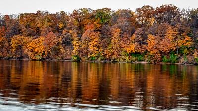 Minneapolis: Fall Color