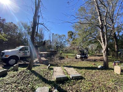 HAMMCO TREE SERVICE