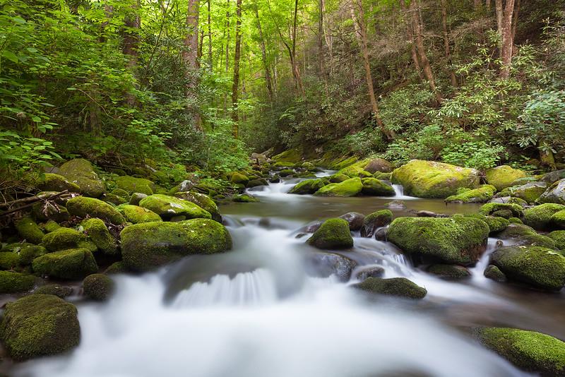 Spring Creek II