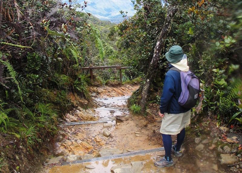 Kinabalu (25).jpg