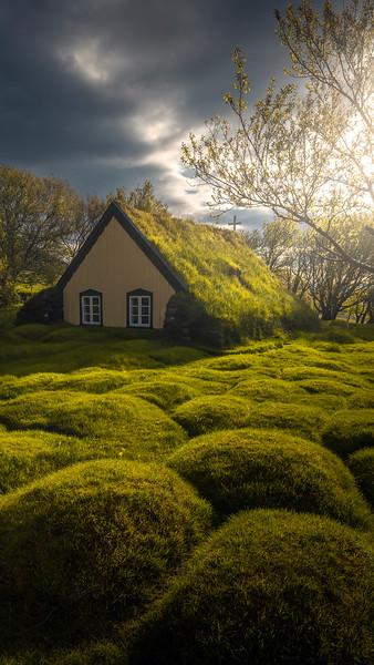 turf.house.mobile.jpg