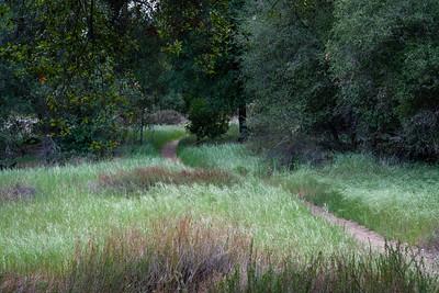 04-27 San Mateo Peak Loop
