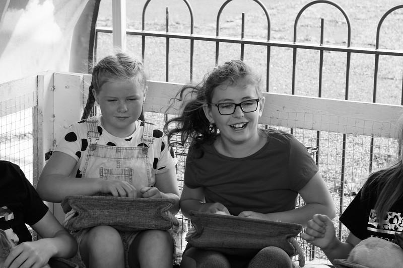 Family Fun Day-64.jpg