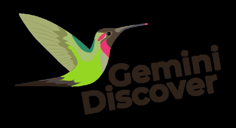 Gemini Discover3-01.png