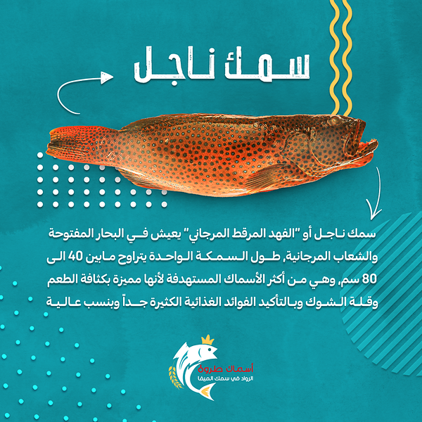 Najel-Fish.png