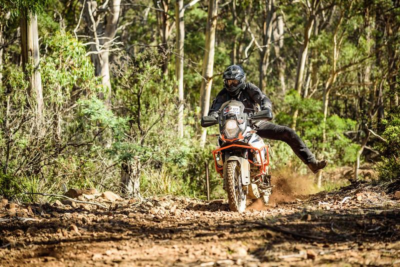 2019 KTM Australia Adventure Rallye (575).jpg